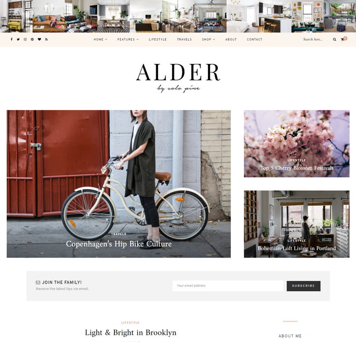 05 - 13 Fresh Minimalistic WordPress Blog Themes of 2019
