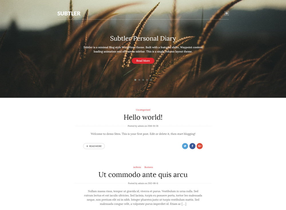 19 - 20 Free Minimalist WordPress Themes for Blogs, Portfolio Websites