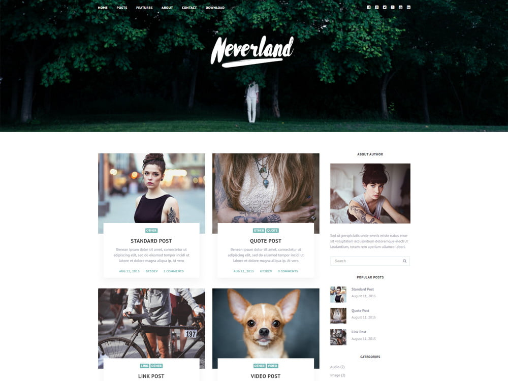 30 - 20 Free Minimalist WordPress Themes for Blogs, Portfolio Websites