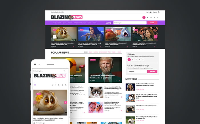 11+ Best WordPress Themes for News Website