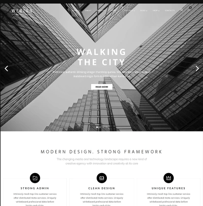 Screenshot_13 - 12+ Best Selling WordPress Themes