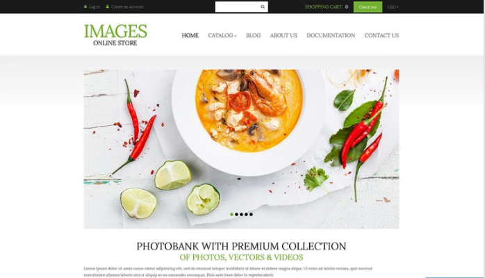 Art-Photography-Shopify-Theme - 30+ Free & Paid Design & Photography Shopify Shopping Themes 2018