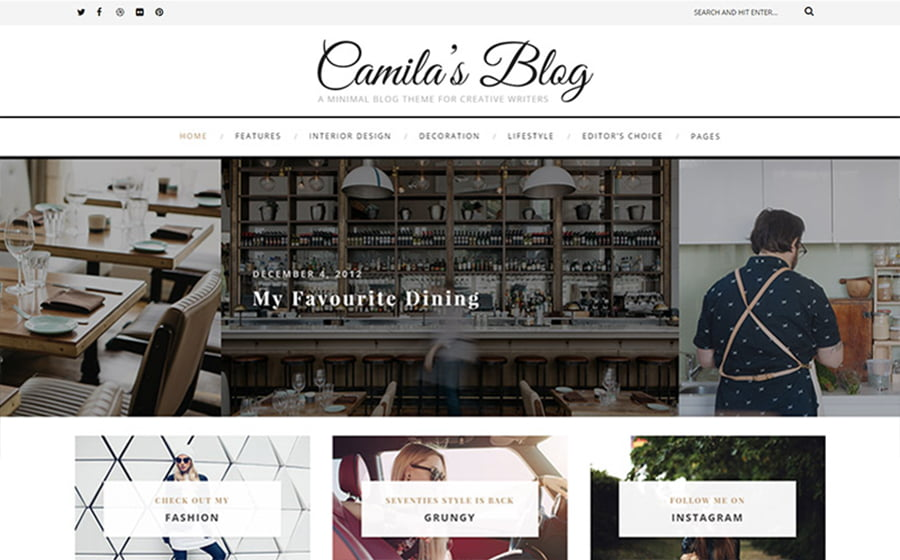 Camila - 15 Blogging WordPress Themes to Start a New Blog [year]