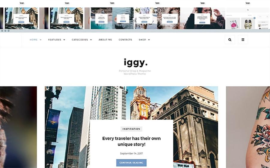 Iggy - 15 Blogging WordPress Themes to Start a New Blog