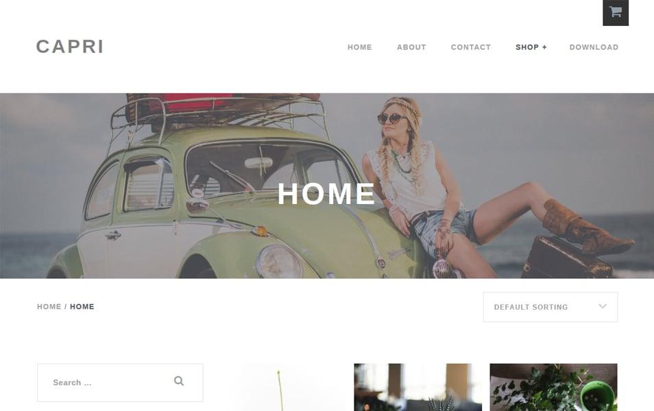 Capri-Lite - 110+ Best Free ECommerce WordPress Themes 2019