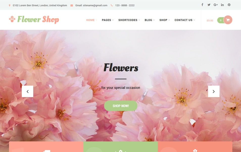 Flower-Shop-Lite - 110+ Best Free ECommerce WordPress Themes 2019