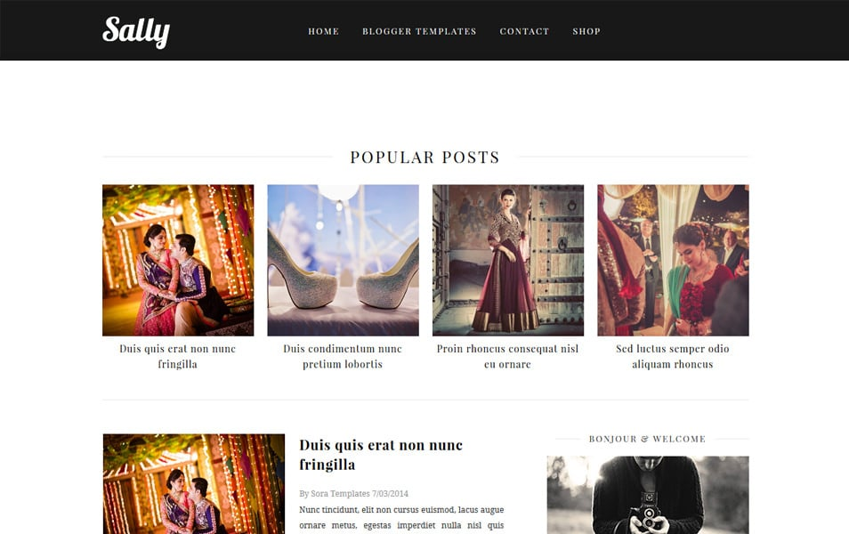 Sally-Responsive-Blogger-Template - 60+ Blogger Latest Free Gallery Style Templates [year]