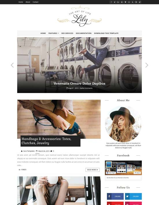 lily-fashion-blogger-template - 110+ FREE RESPONSIVE BLOGGER TEMPLATES [year]