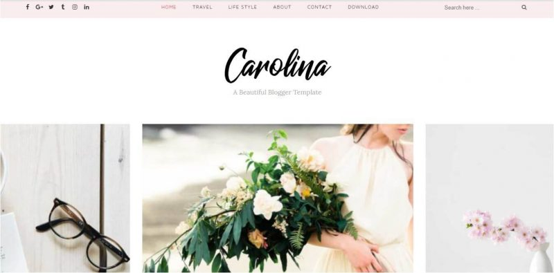 Carolina-800x395 - 53+ Top BEST Free Minimalist Blogger Templates [year]