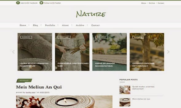 Nature-Classic-Blogger-Template - 50+ Top Free Portfolio Blogger Templates 2019