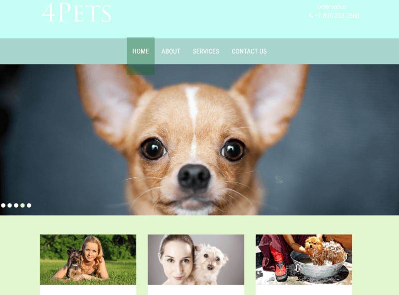 4Pets-1 - 56+ Best Free Animals & Pets HTML Website Templates
