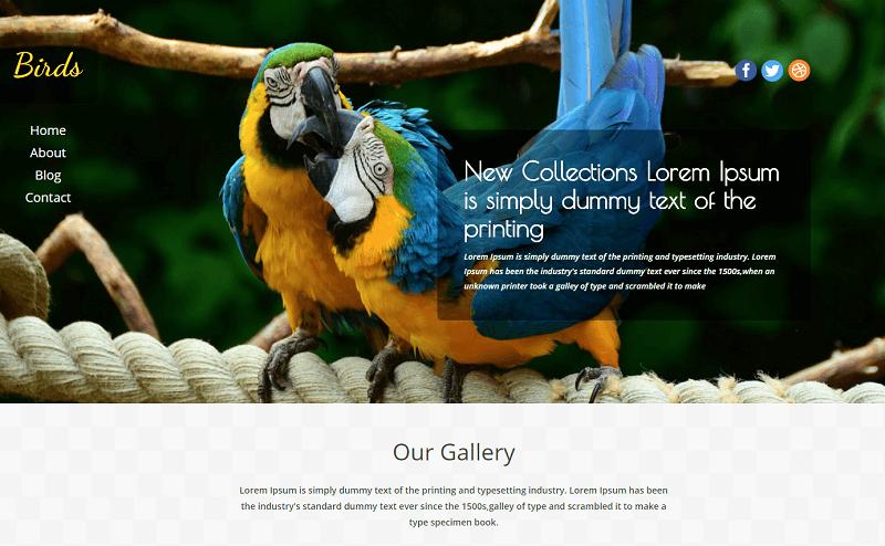 Birds-1 - 56+ Best Free Animals & Pets HTML Website Templates