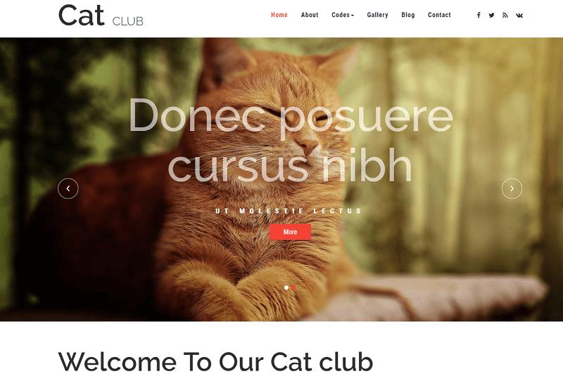 Cat-Club-1 - 56+ Best Free Animals & Pets HTML Website Templates