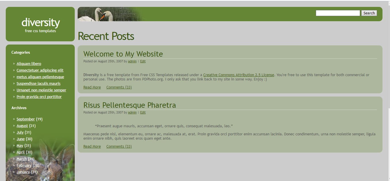 DIVERSITY-FREE-CSS-TEMPLATE - 56+ Best Free Animals & Pets HTML Website Templates