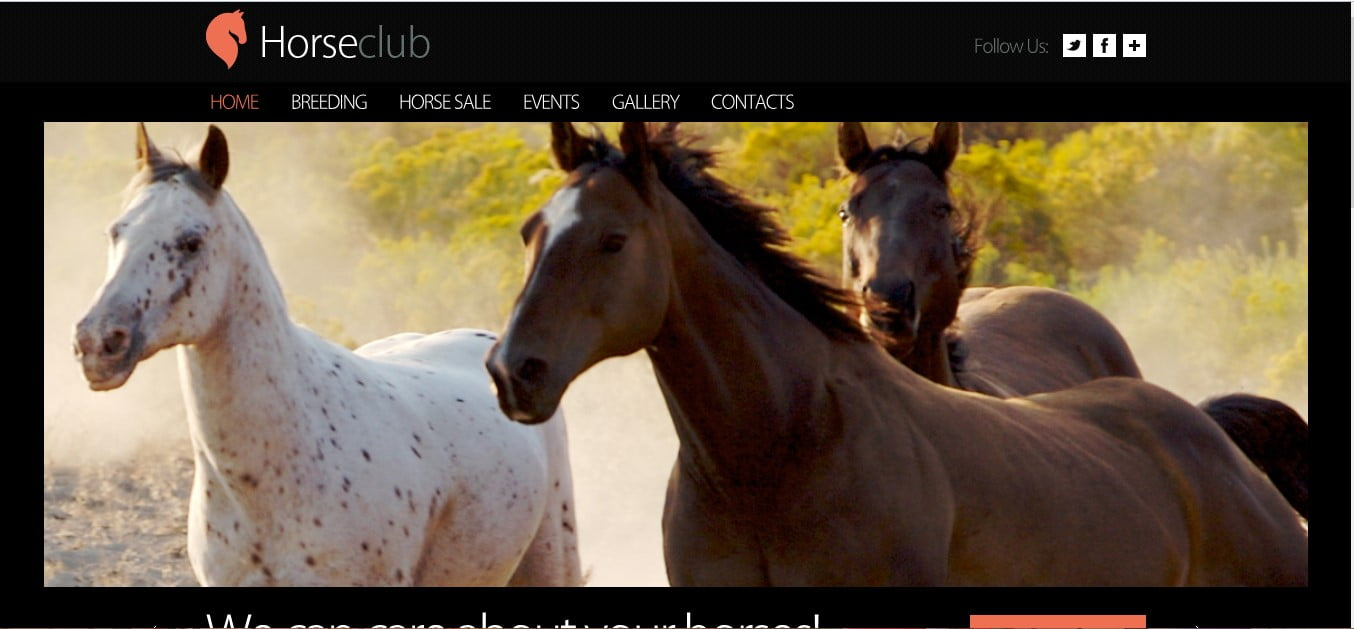 HORSECLUB - 56+ Best Free Animals & Pets HTML Website Templates