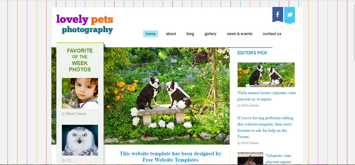 LOVELY-PETS-PHOTOGRAPHY - 56+ Best Free Animals & Pets HTML Website Templates