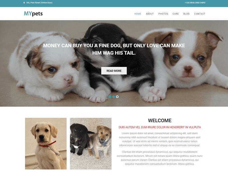 My-Pets-1 - 56+ Best Free Animals & Pets HTML Website Templates