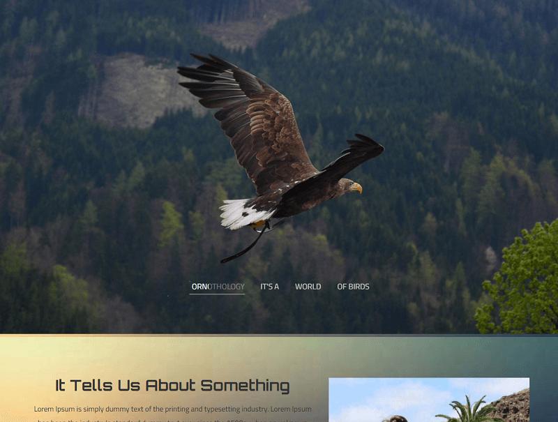 Ornithology-1 - 56+ Best Free Animals & Pets HTML Website Templates