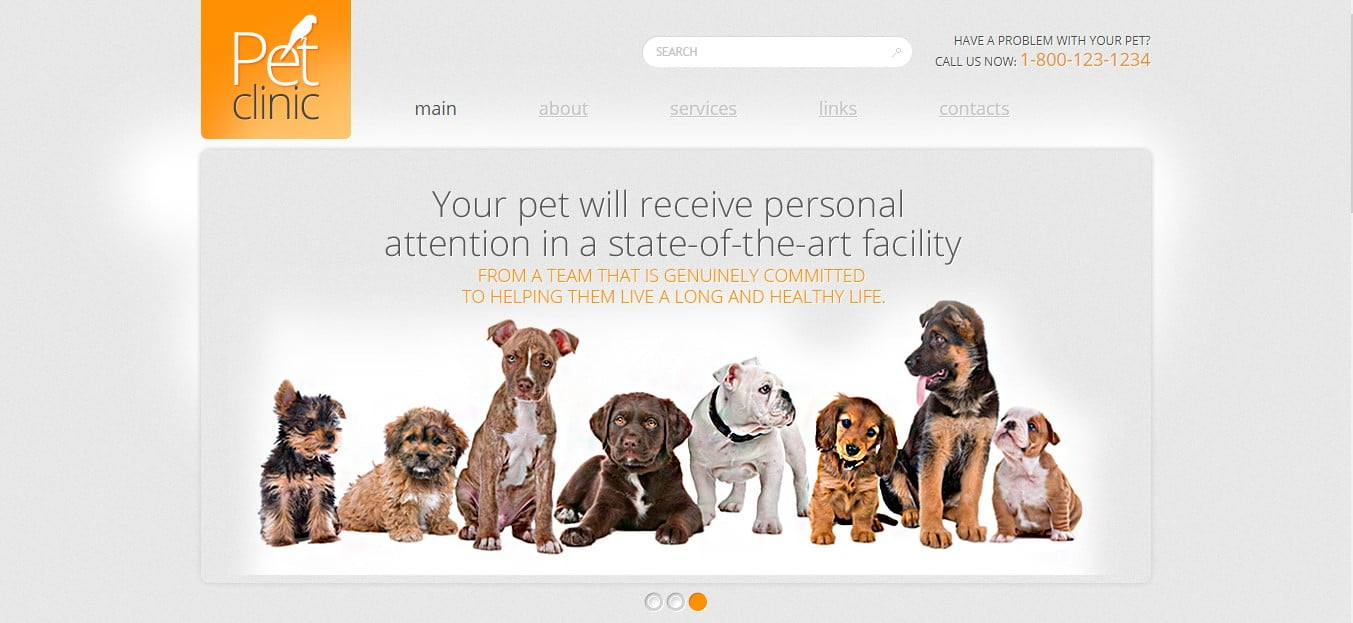 PET-CLINIC-FREE-CSS-TEMPLATE - 56+ Best Free Animals & Pets HTML Website Templates