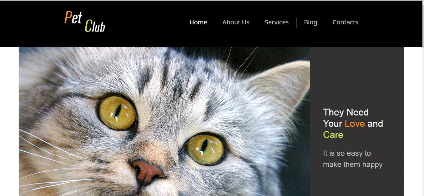 PET-CLUB - 56+ Best Free Animals & Pets HTML Website Templates