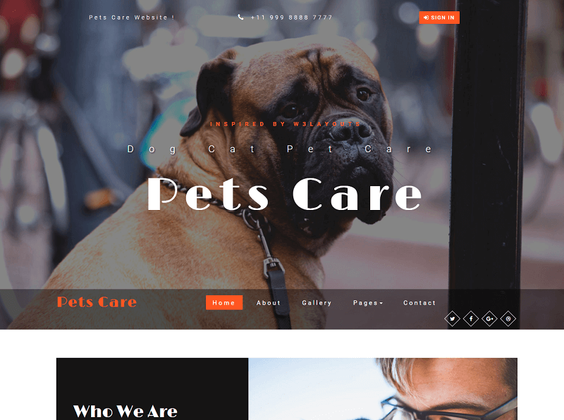 Pets-Care-1 - 56+ Best Free Animals & Pets HTML Website Templates