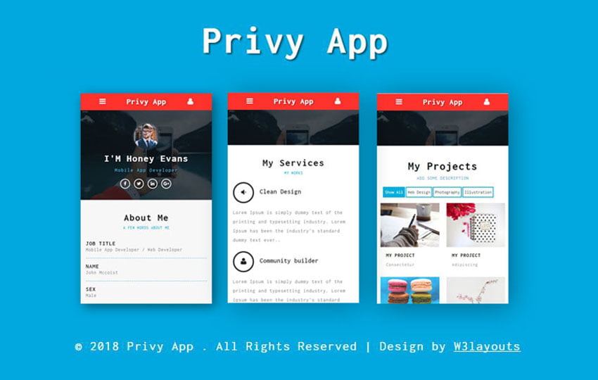 Privy - 56+ Best Free App Landing Page HTML Website Templates [year]