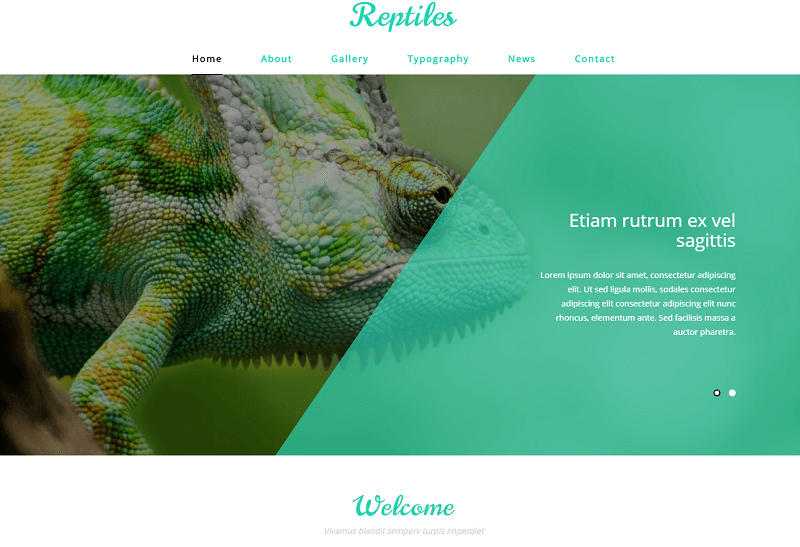 Reptiles-1 - 56+ Best Free Animals & Pets HTML Website Templates