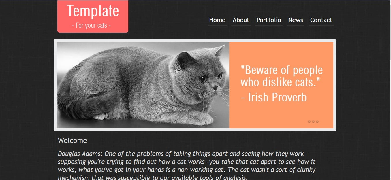 THE-CAT-FREE-CSS-TEMPLATE - 56+ Best Free Animals & Pets HTML Website Templates