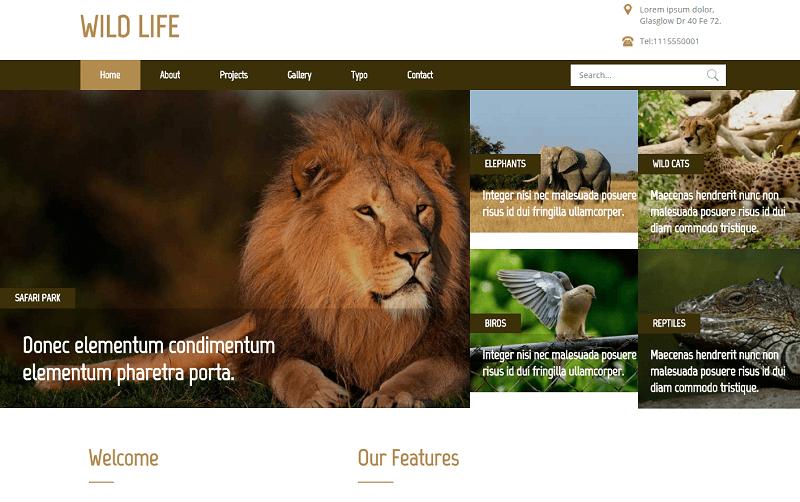 Wild-Life-1 - 56+ Best Free Animals & Pets HTML Website Templates