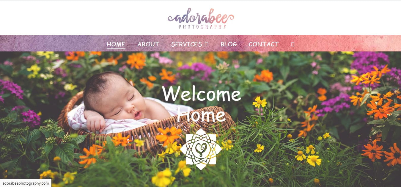 Adorabee - 50+ Great Examples Of WordPress X Theme in Action