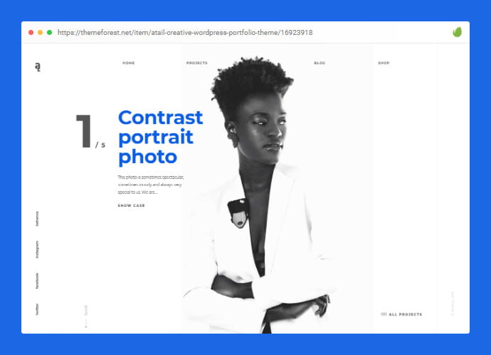 Anadbry - 35+ Minimal WordPress Theme Designs For Creatives [year]