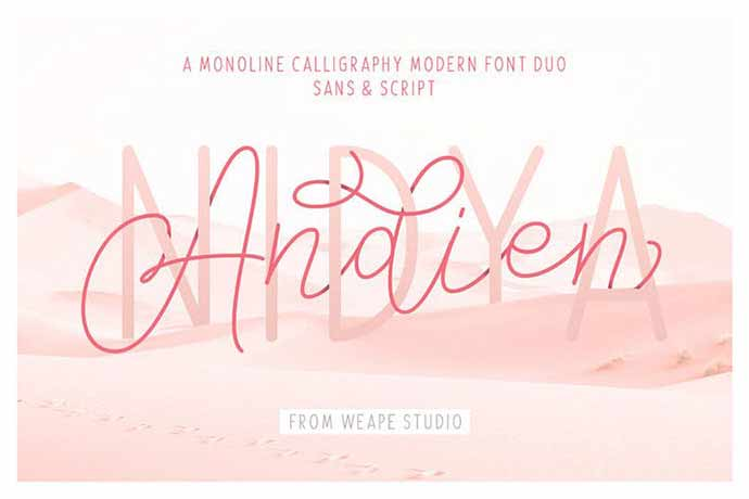 Andien-Nidya-Script-Sans - 52+ Wonderful Fonts for Calligraphy Logo Design [year]