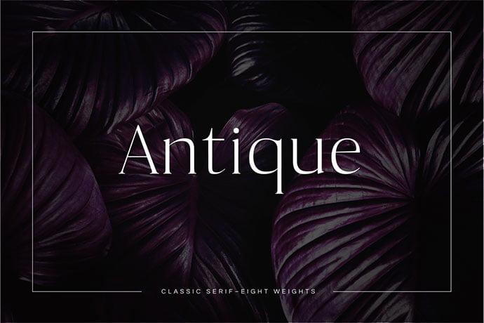 Antique - 35+ Effective Fonts for Brochure Design [year]