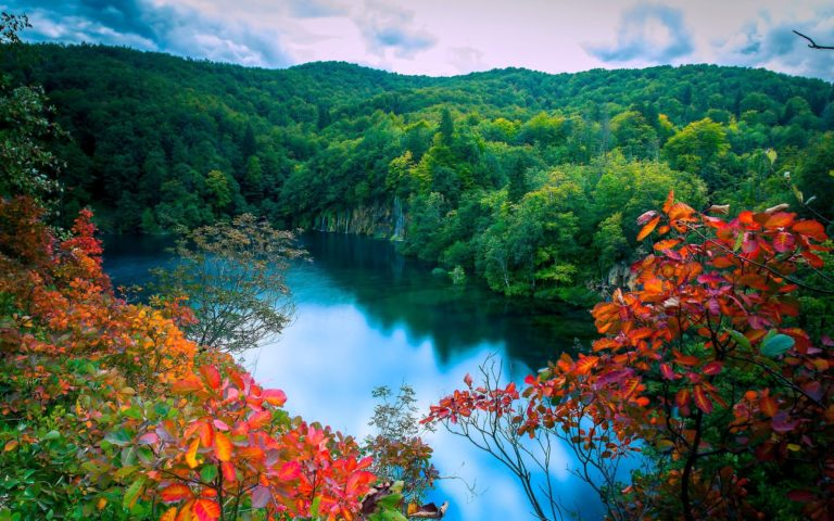 Autumn-Forest-Lake-Trees-Waterfalls-2560-X-1600-768x480 - 50+ Free Download Full HD Autumn Wallpapers [year]