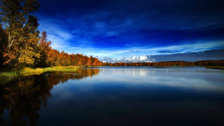Autumn-In-Norway-1600-X-900-768x432 - 50+ Free Download Full HD Autumn Wallpapers [year]