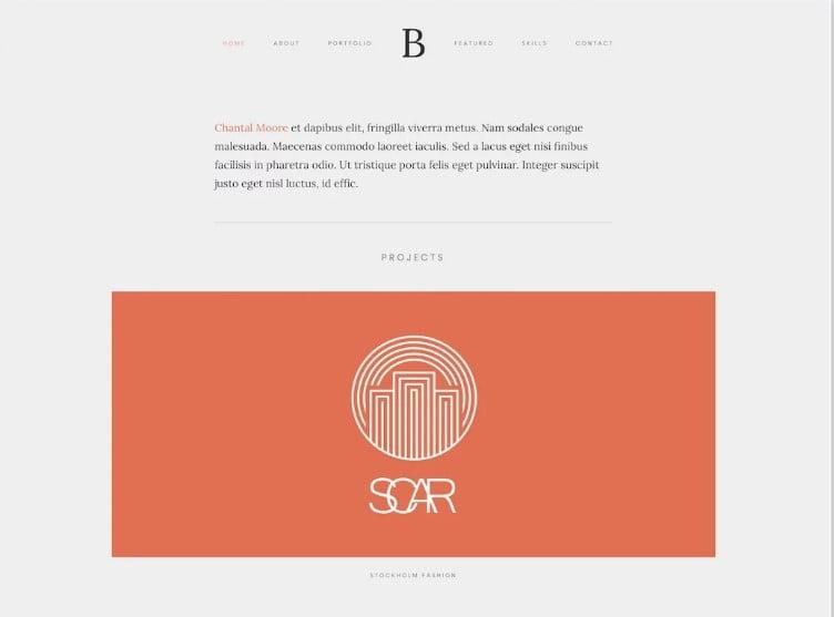 Bridge - 38+ Shiny WordPress Themes for Designers [year]