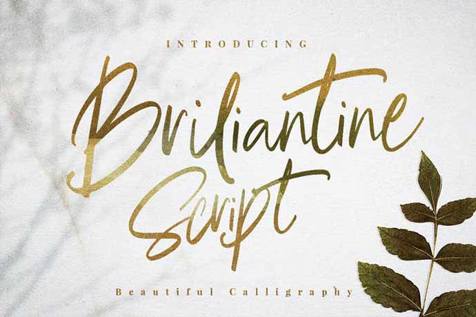 Briliantine-Script - 52+ Wonderful Fonts for Calligraphy Logo Design [year]