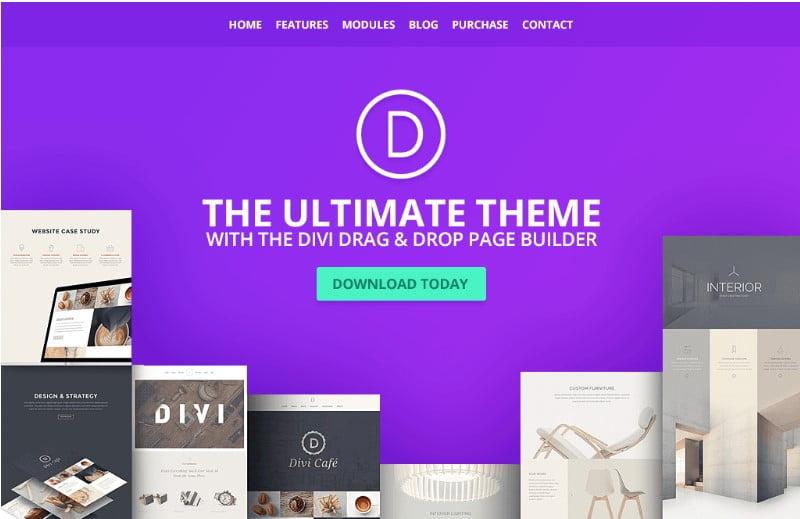 Divi-1 - Top 60+ News Magazine WordPress Themes [year]