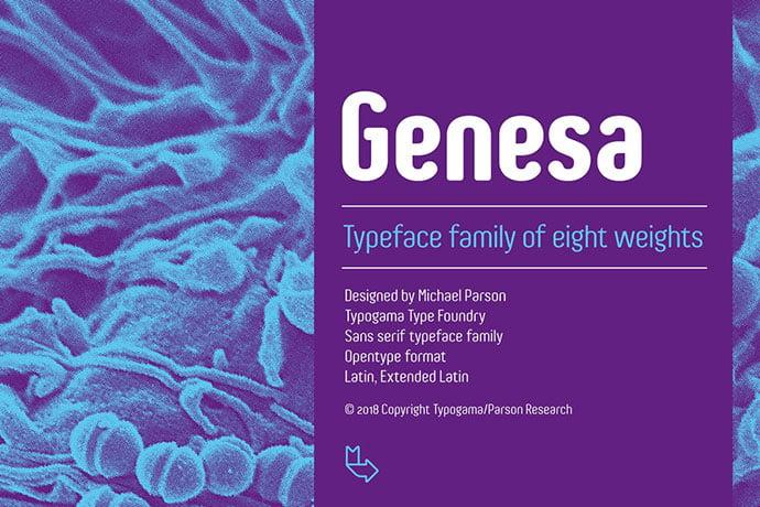 Genesa - 35+ Effective Fonts for Brochure Design [year]