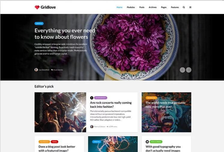 Gridlove - Top 60+ News Magazine WordPress Themes [year]