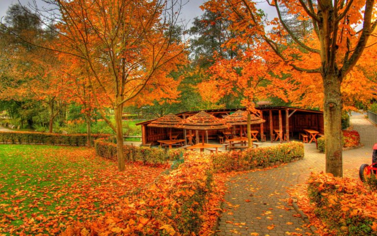 Landscapes-Autumn-Fall-Color-Wallpaper-1920x1200-768x480 - 50+ Free Download Full HD Autumn Wallpapers [year]