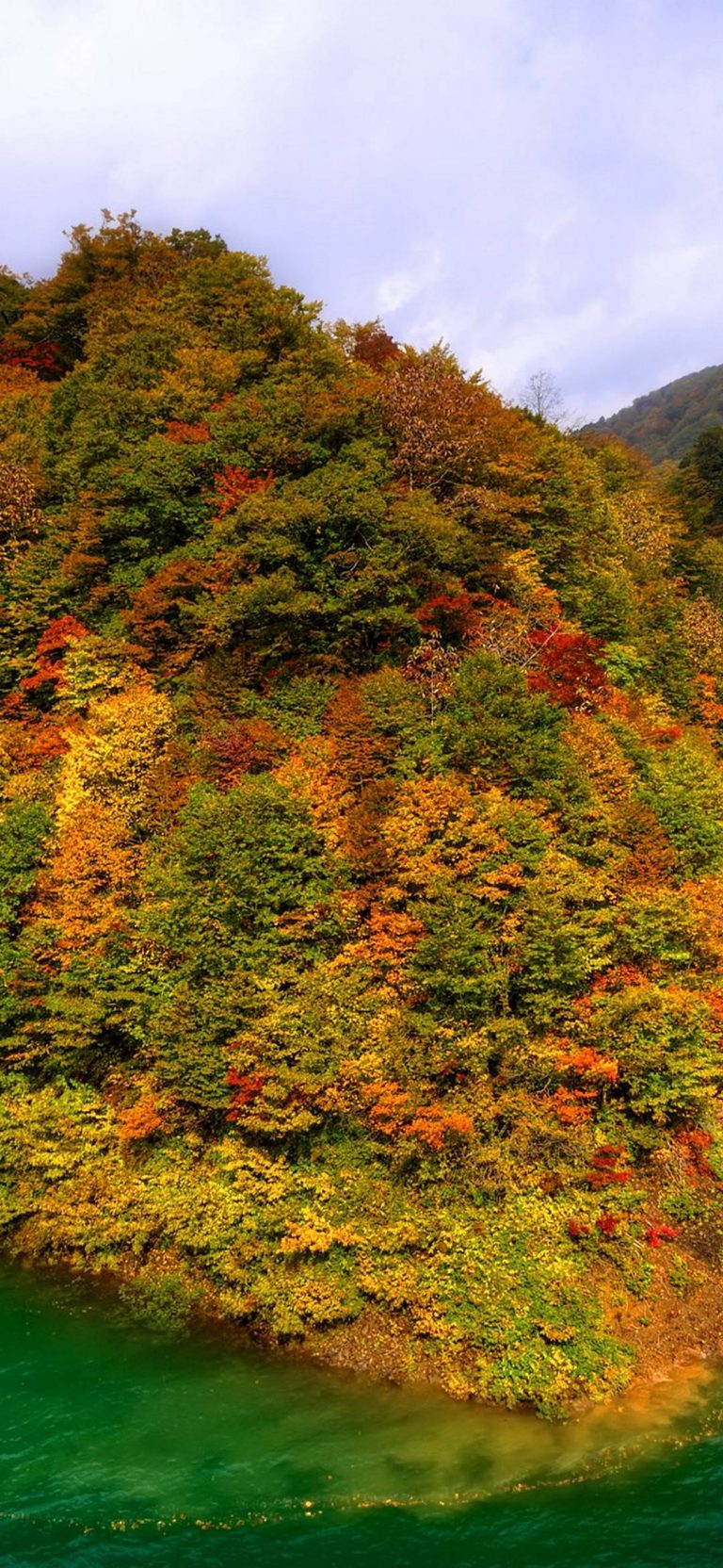 Mountains-Japan-Fall-Forest-Lake-Autumn-1080x2340-768x1664-1 - 51+ BEST Free vivo Z1 Pro Phone Wallpapers [year]