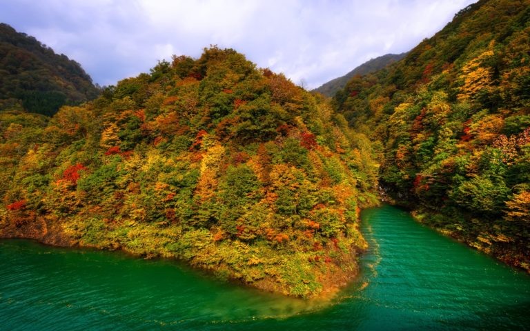Mountains-Japan-Fall-Forest-Lake-Autumn-2560-X-1600-768x480 - 50+ Free Download Full HD Autumn Wallpapers [year]