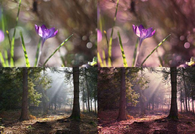 Mystical-Light - 64+ FREE Amazing Photoshop Actions [year]