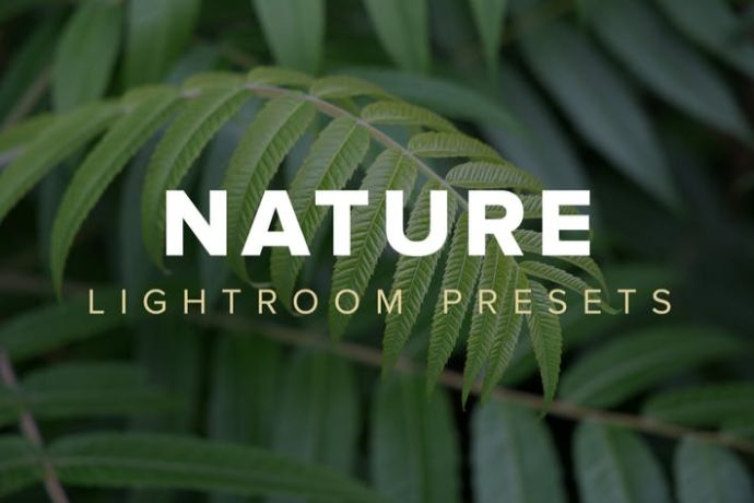 Nature-Lightroom-Presets - 75+ Awesome Lightroom Creative Digital Photography [year]