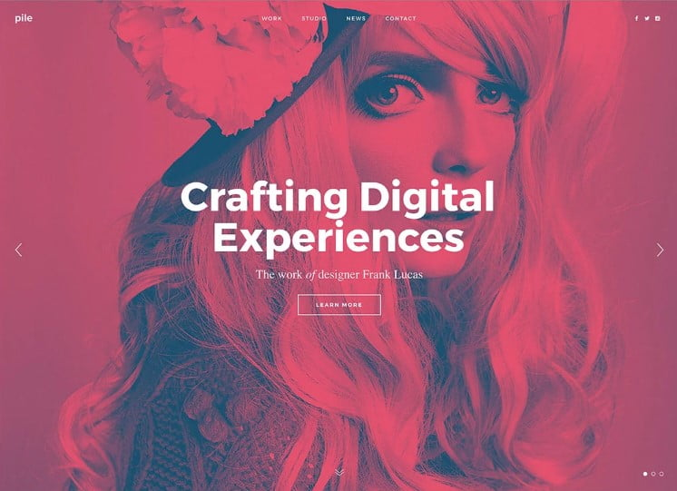 PILE - 38+ Shiny WordPress Themes for Designers [year]