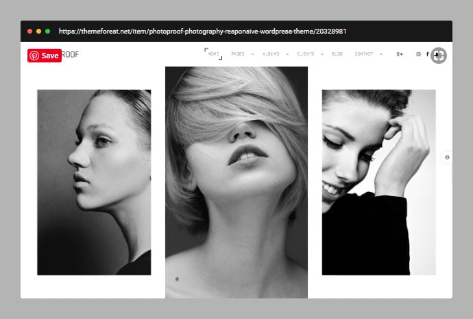 PhotoProof - 30+ Wedding Photography WordPress Themes [year]
