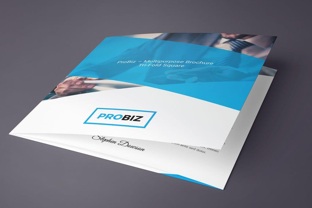 ProBiz - 60+ Bi-fold & Tri-fold Brochure Design Templates [year]