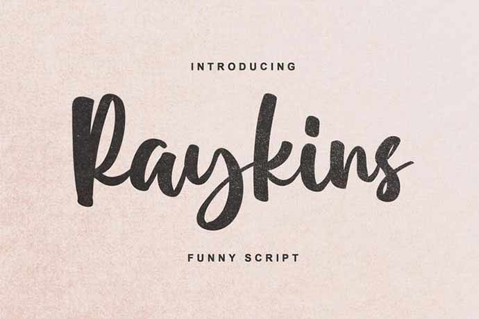 Raykins - 52+ Wonderful Fonts for Calligraphy Logo Design [year]