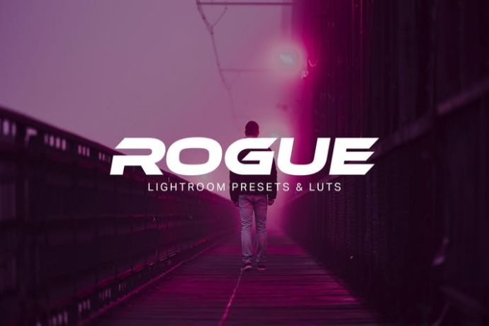 Rogue - 75+ Awesome Lightroom Creative Digital Photography [year]